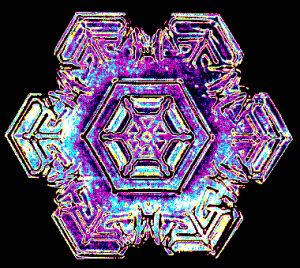 01_snowflake_colorized_early_experimental_digital_photography_by_Rick_Doble